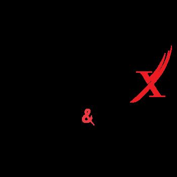 Blinx Logo [Final draft]-02
